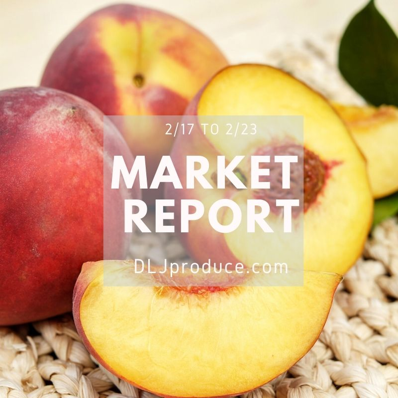 produce market report
