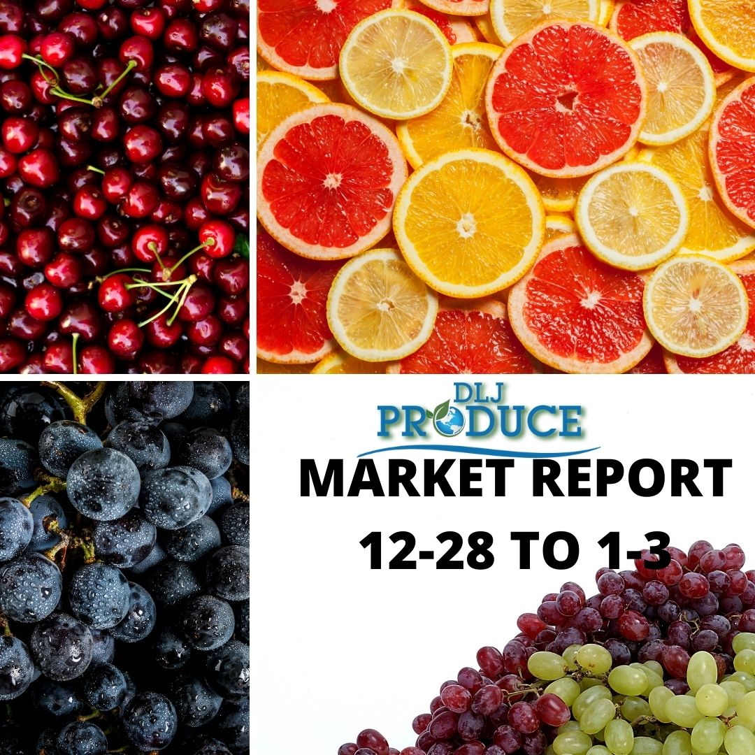 Citrus Grapes and Tree Fruits Market Report